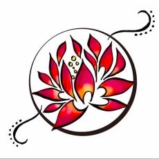 cropped-lmy-logo