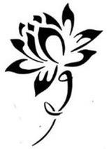best lotus